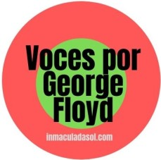 Voces por George Floyd